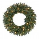 24 in. Pre-Lit B/O LED New Meadow Artificial Christmas Wreath x 225 Tips with 35 Warm White Lights and Timer-GD20P2581L01 206795469