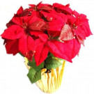 Home Accents Holiday 21 in. Red Glittered Silk Poinsettia Arrangement (Case of 6)-03X0190R17YOW 301578854