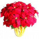 Home Accents Holiday 28 in. Extra Large Red Silk Poinsettia Arrangement (Case of 2)-03X3035YOW 301576340