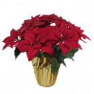 Home Accents Holiday Christmas 21 in. Red Glittered Poinsettia in Foil Pot-03X0190R14-RED 206949824