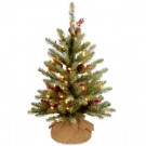 National Tree Company 24 in. Dunhill Fir Tree with Battery Operated Warm White LED Lights-DUF-300-20-B1 300478165